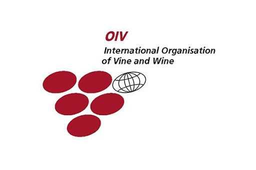 OIV Webinar