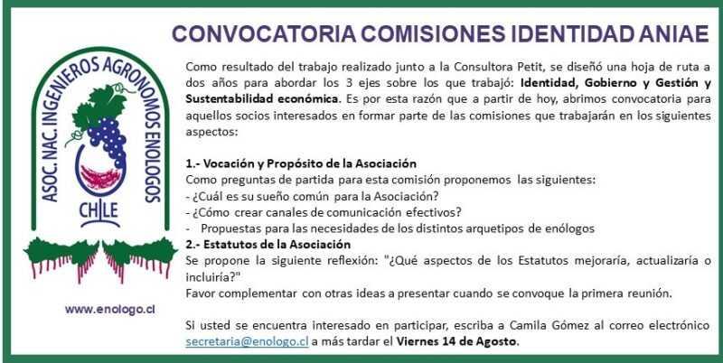 NUEVO PLAZO CONVOCATORIA COMISIONES IDENTIDAD