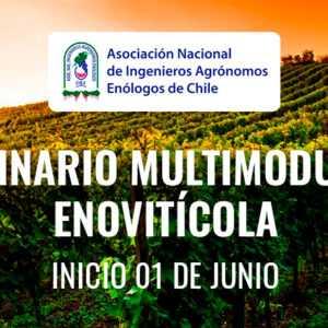 Seminario Multimodular Enovitícola
