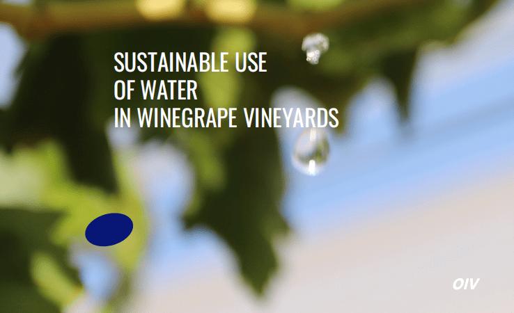 Uso sostenible del agua en el viñedo, elaborado por la OIV