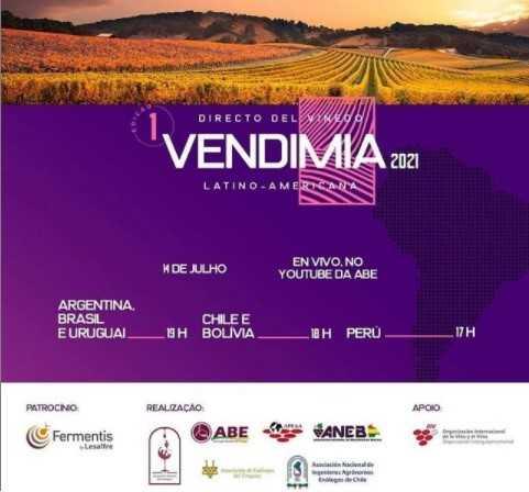 Directo del Viñedo. Vendimia 2021 Argentina